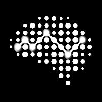 NSI Logo Art